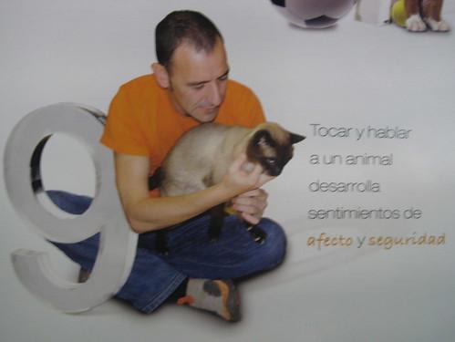 tocar y hablar mascotas