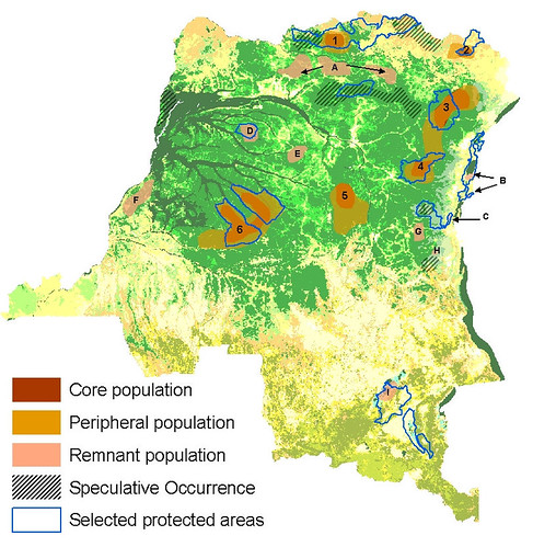 Areas where elephants have not disappeared in DRCongo