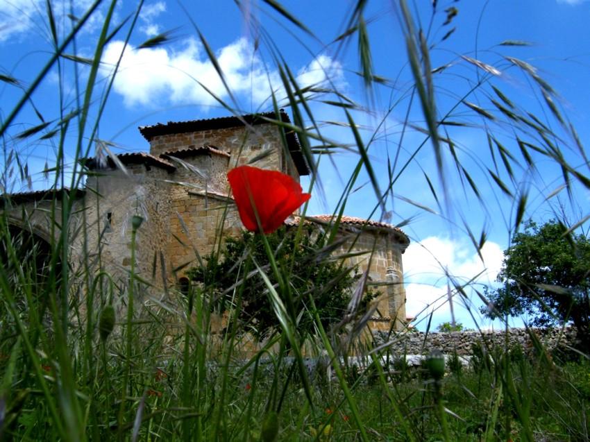 La belleza del románico - Página 2 3328256935_648e120fa0_o