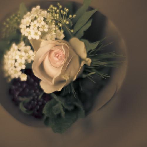 12279 : Bouquet