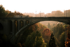 le pont adolphe (Dennis_F) Tags: bridge autumn trees light red orange sunlight bus green rot fall colors car sony 1750 pont grn dslr tamron brcke bume farben sonnenlicht herbstfarben a700 pontadolphe tamronlens tamron1750 sonydslr tamron175028 alpha700 sonya700 sonyalpha700 dslra700 tamronobjektiv
