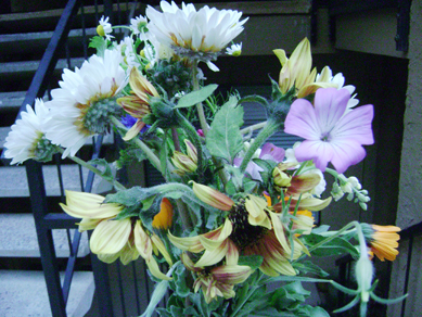 3/8/08 flower therapy from Maya's Farm, Public Market