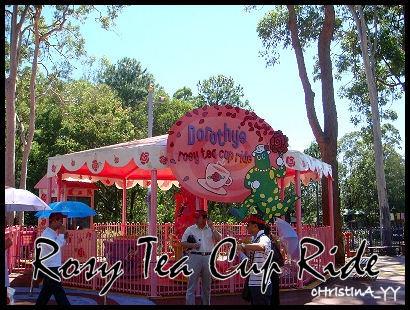 Dorothy's Rosy Tea Cup Ride