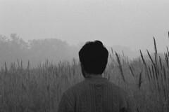 The Urban Jungle feels an Estrangement, This is Where I Belong (uhbiv) Tags: slr film analog forest nikon jane delhi jungle presence realisation elephantgrass realization f75
