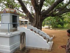 Kailasa Vinayagar Temple 2