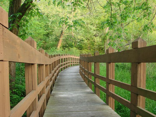 Walking bridge in Wallace State Park