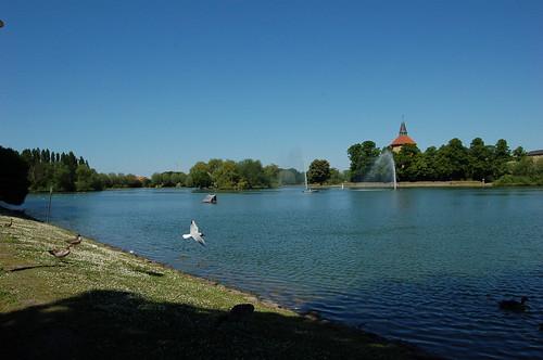 公園の中心にある池