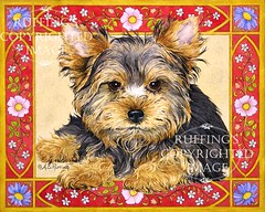 """""""Yorkie Puppy AER91 by A E Ruffing"""