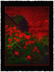 Red (Steel Steve) Tags: chapeau themoulinrouge goldenglobe firstquality fpg fineartphotos infinestyle memoriesbook theunforgettablepictures theunforgettablepicture proudshopper thegardenofzen thegoldendreams life~asiseeit multimegashot photoshopcreativo magicdonkeysbest photoexel obq atqueartificia thetowerofpriapus