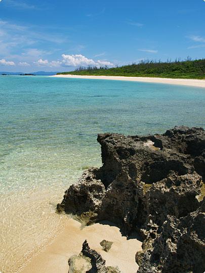 浜シタン群落あたりの海