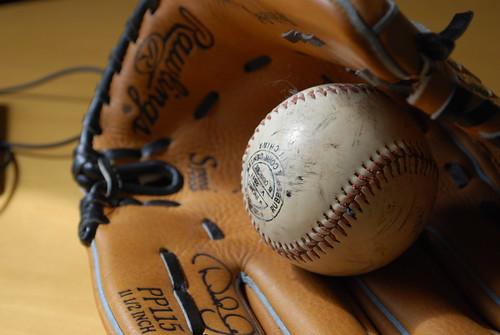 Essays description of a baseball