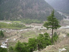 Sangla Valley(Kinnaur) (Lara Tsering) Tags: trip travel india mountain mountains temple heaven tour desert hiking walk buddhist indian hike tibet hills monastery backpacking valley tibetan himalaya tabo himachal himalayas spiti himalayan pradesh highaltitude rohtang kinnaur peo kaza kalpa lahaul mudh reckong
