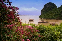 Colorful Halong Bay in Vietnam (Butch Osborne) Tags: travel beautiful vietnam traveling halong halongbay mustsee naturesfinest vitnam  digitalcameraclub hni hanoivietnam vnhhlong top20travel overseasadventuretravel cnghaxhichnghavitnam bucketlist flickrlovers