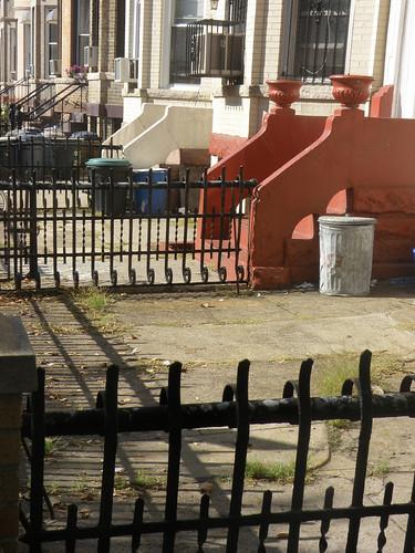 Brooklyn Urban Garden Site Survey