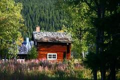 La cabaña del bosque (danybotica) Tags: wood house sweden suecia hause flickrestrellas danybotica