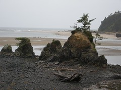 Road Trip Xmas 2008 (Otter Rock, Oregon, United States) Photo