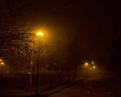 Fog, dark street and artificial light (andrea.coal) Tags: street city light shadow italy black cold fog night dark gold town strada italia december mood air ombra artificial nebbia piacenza freddo notte lampioni luce sera buio longexposition abigfave andreacoal