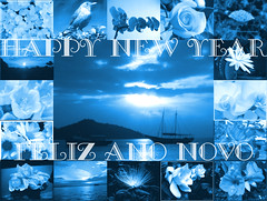 Feliz Ano Novo....Happy New Year (Martha MGR) Tags: blue azul photoshop sopaulo colagem vernissage happynewyear 1000views felizanonovo mmgr pathwork marthamgr reservaespecial 4msphotographicdream 3msroyalflowers 2msroyalstation marthamariagrabnerraymundo marthamgraymundo