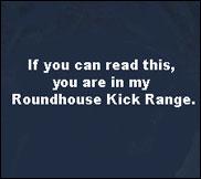 roundhouse-kick-range-photo