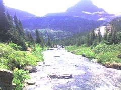 img430 (pm_dooley) Tags: elvira montana2008