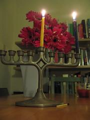 First Night (feministjulie) Tags: california flowers holiday losangeles candles jewish judaism hag hanukkah firstnight menorah hanukkiah