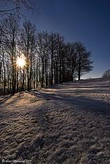 20090111_4029 Alpe della luna (Lino Sgaravizzi ) Tags: natura neve inverno paesaggio flickrsbest laclassenonacqua valtiberina anawesomeshot theunforgettablepictures overtheexcellence