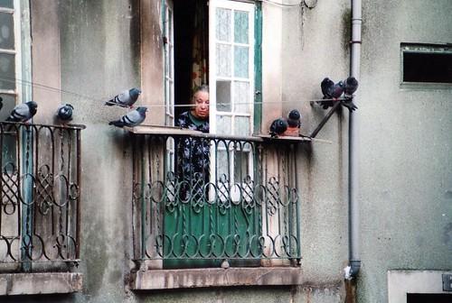 Vecchietta e piccioni