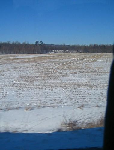 Ontario field