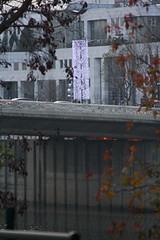 Puteaux - Illumination Nol 2008 (Gilles Couteau) Tags: mairie puteaux mairiedeputeaux illuminationdenol2008illumination