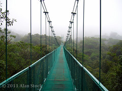 Cloudforest Bridge (Jigsawn) Tags: 2005 abov