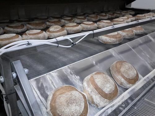 Classic Turano Bread