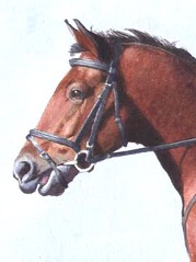 "Jumping horse - watercolour ( detail) • <a style=""font-size:0.8em;"" href=""http://www.flickr.com/photos/64357681@N04/5867045174/"" target=""_blank"">View on Flickr</a>"
