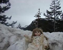 Snow Bank (portugita_norton) Tags: snow washington doll mtrainier livingdoll