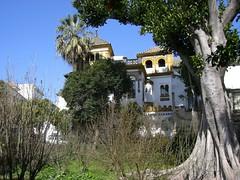 Sville, jardin Murillo (mhp75) Tags: espagne sville andalousie