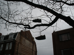 84 of 366 (k2powderhound) Tags: city shadow tree classic skyline manchester shoes nh silhouete