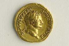 Titus aureus