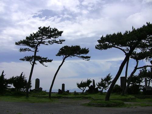 Zushi sea