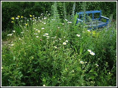 wildflowergarden copy