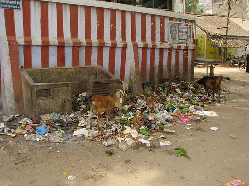 India - Sights & Culture - Common garbage dump outside a temple
