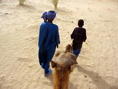 camel guides (jenniferrobot) Tags: sahara desert taurag camelmaliafrica