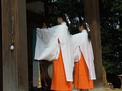 Daidai Kagura(太々神楽)-07 [formername: CRW_0164]
