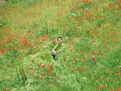 Right here, Lo with poppies (ti_rouge) Tags: trip red camp verde green rouge vacances spain rojo holidays archive 2006 vert espana segovia poppy poppies campo middle espagne vacaciones laurent champ herbe