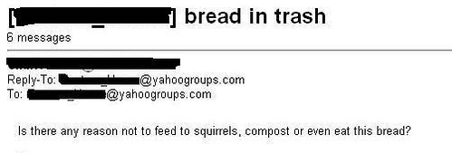 re: bread in trash — Is there any reason not to feed to squirrels, compost, or even eat this bread?