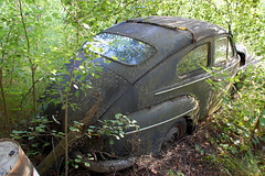Abandoned Volvo PV 444