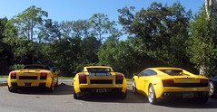Awesome Trio of Lamborghini Gallardo's *EXPLORED* (sledhockeystar7) Tags: blue red two orange white black slr ford wheel yellow speed silver island lights mercedes benz three spider back long name pair side tail group champion continental 360 right ferrari front row spyder mclaren badge 400 bmw rolls motor trio jaguar gt phantom audi rims left lamborghini coupe royce bentley maserati gallardo noble f430 220 612 r8 xj quattroporte scaglietti z8 superleggera xj220 m400 lp5604