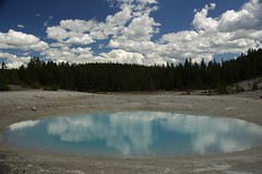 Reflets à Yellowstone