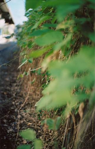 Hidden Rails
