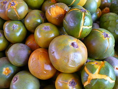 Europeans now allowed to eat Lúcuma