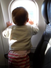 En route to Ballina