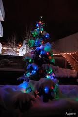Merry christmas, Iceland (lundur/Iceland) Tags: saw pic it in i bexcellent bgreat seeninb bfotovistaenelgrupo seeinthegroupb